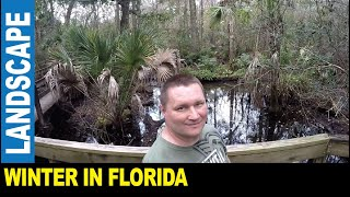 Winter in Florida awesome park jungle wild animals swamps John