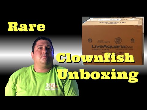 Rare Clownfish Unboxing