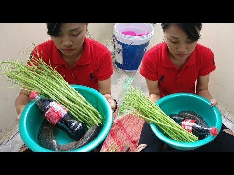 Coca Cola Fish Recipe  Beautiful Girl Cooking Fish With Coca Cola / AHA Factory