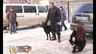 Таңғы Алматы - Ветеринар(, 2014-02-13T07:19:00.000Z)
