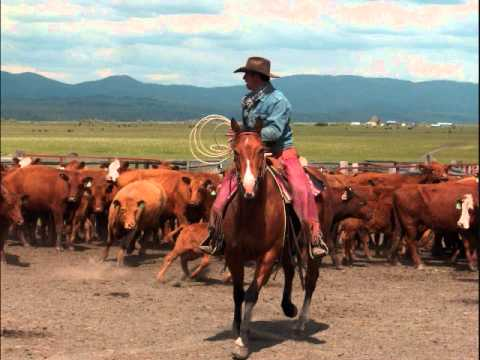 Quarter Horses for sale from YouTube · Duration:  3 minutes 9 seconds  · 114 views · uploaded on 21.04.2016 · uploaded by Martina Lukacs