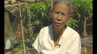 Urban Vegetable Farming in the Philippines (TeleFood project)