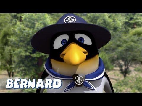 Bernard Bear | Boy Scout AND MORE | 30 min Compilation | Cartoons for Children