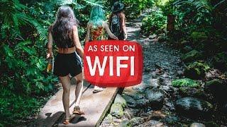 MIJA/AS SEEN ON WIFI: kawaii hawaii