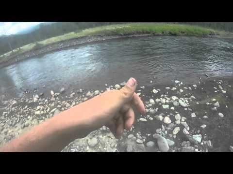 Yellowstone Fly Fishing