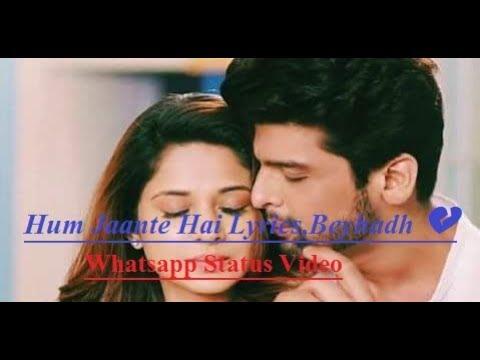 Hum Jaante Hai Lyrics,Beyhadh 💔 | Whatsapp Status Video |Jennifer Winget | Whatsapp 30 Second Video