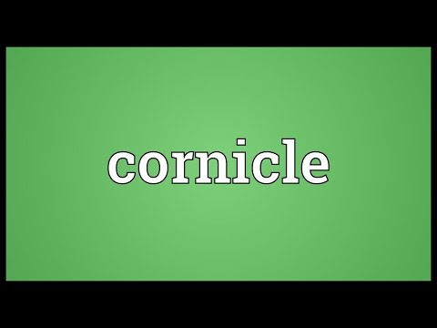 Header of cornicle