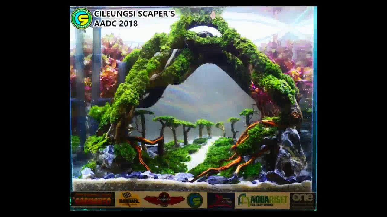 5100 Koleksi Foto Aquascape Design Contest HD Terbaik Unduh Gratis