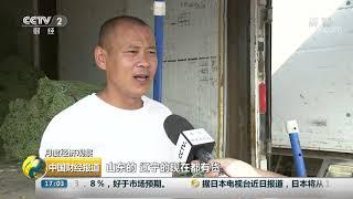 [中国财经报道]月度经济观察 北京:豇豆芹菜领跌 蔬菜价格降幅明显| CCTV财经