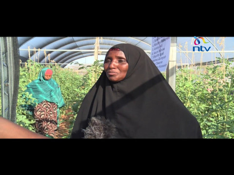 Women and Power: Alimau Women Group and their story of hope in drought