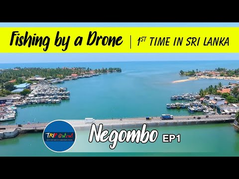 Negombo Travel part 1 | Fishing by drone  VLOG #8