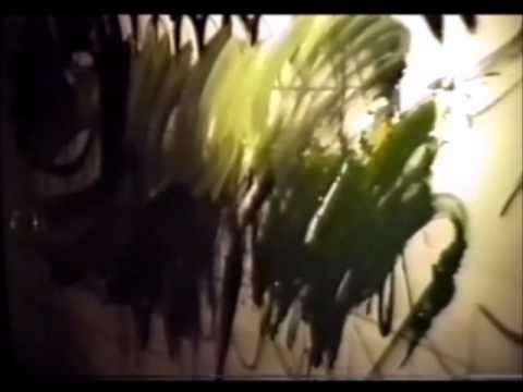 """Artes Simultâneas""- Heitor Villa Lobos & Adir Sodré- Pantanal Alerta Brasil- Aeroanta-SP-1990"
