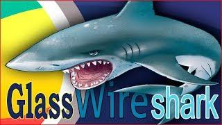 снифинг трафика Windows  GlassWire  Wireshark