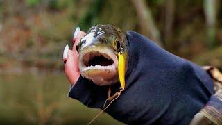 ЧУТЬ НЕ УТОНУЛА! Рыбалка на реке. ШОК! Поймала ручьевую форель! #90