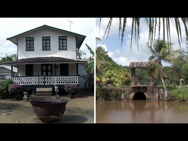 Warrapakreek - Suriname