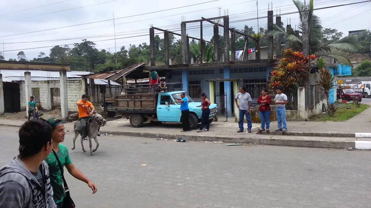 Carrerera De Burros Puerto Limon 2014 Ecuador Youtube
