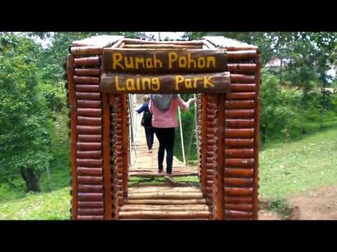 Nature Tourism tree house Laing Park
