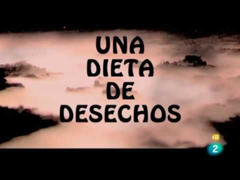 Una dieta de desechos (21 08 11 Documentos TV T24x31)