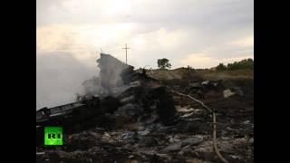 RAW: Debris at Malaysian MH17 plane crash site in E. Ukraine