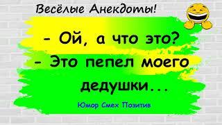 Подборка веселых анекдотов для настроения Юмор Смех Позитив Выпуск 150