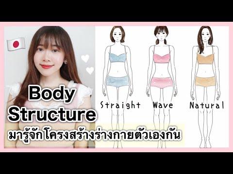 Body Structure มารู้จักโครงสร้างร่างกายตัวเองกัน EP.1 | 骨格診断紹介
