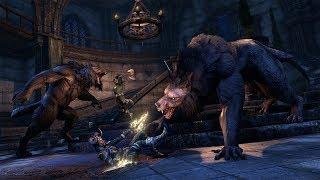 The Elder Scrolls Online: Meet the Dev & Community Dungeon Run