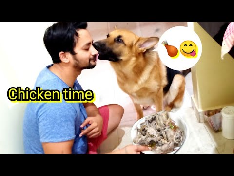 Preparing chicken for Simba  chicken for GSD  dog food