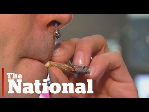 Thumbnail: Marijuana could be legalized by 2018 Canada Day