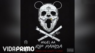 Anuel AA - RIP Panda [Official Audio]