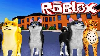 "Dog Simulator ""Roblox"" (Gameplay/PT-BR) - Vida De Cachorro"
