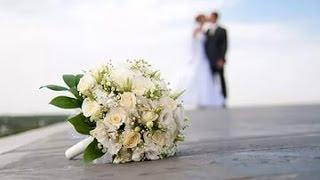 14 февраля 2014г . Моя свадьба