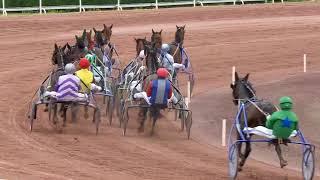 Vidéo de la course PMU PRIX DAME DE CARREAU