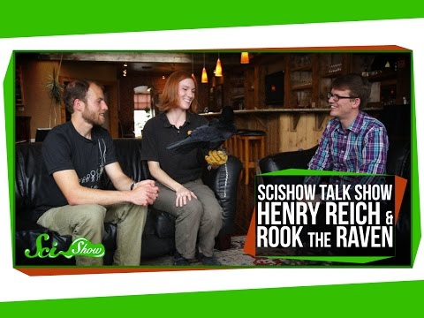 SciShow Talk Show: Henry Reich & Rook the Raven