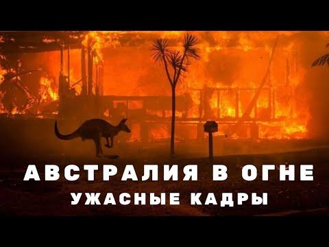 Австралия горит. Пожары вАвстралии уничтожают целые города. Последние новости