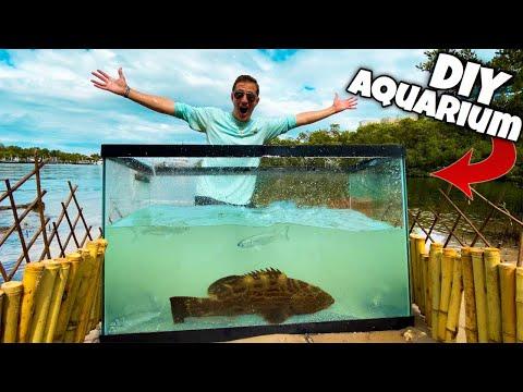 Catching FREAKY FISH For My DIY BEACH AQUARIUM!!