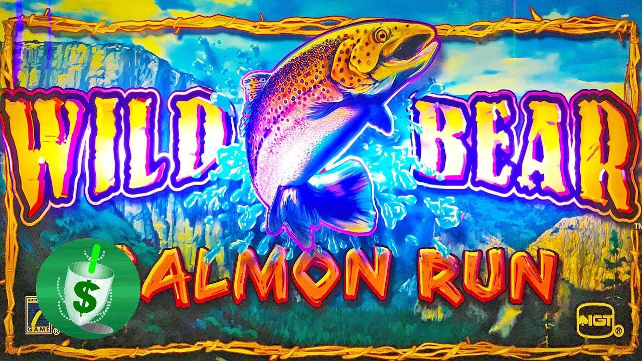 Wild Bear Salmon Run Slot Machine Youtube