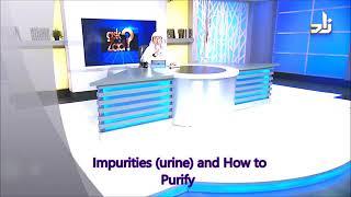Can We Sit Or Pray On Mattress Which Has Dry Urine? - Sheikh Assim Al Hakeem