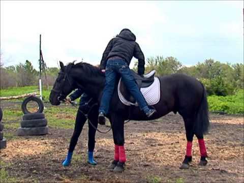Как по английски кататься на лошади