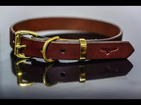 How to make a leather dog collar – leathercraft buildalong tutorial