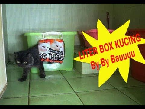 Diy Cara Membuat Liter Box Tertutup Untuk Kucing Youtube