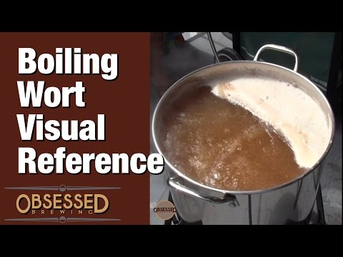 Boiling Wort Visual Reference - Obsessed Brewing