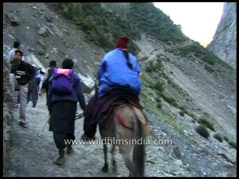 Pilgrims trek their way to the Amarnath cave