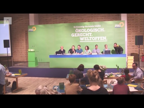 Außerordentlicher Landesparteitag 2017 in Neumünster