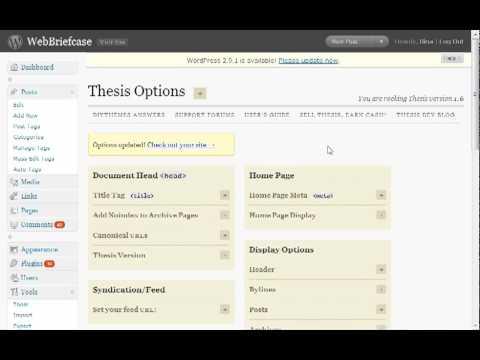 Thesis Theme: Add Menu Items