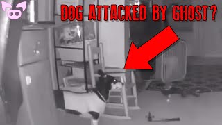 Unnatural Paranormal Encounters Caught on Camera