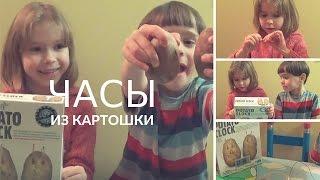 ОБЗОР НАУЧНОЙ ИГРЫ - КАРТОФЕЛЬНЫЕ ЧАСЫ - potato clock 4m