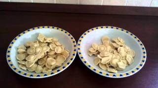 Секреты итальянской свекрови:порции пасты.