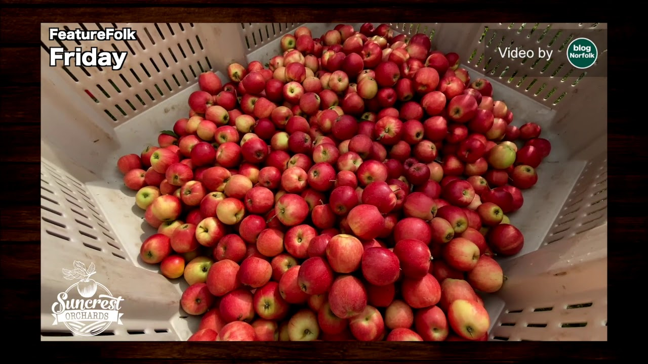 Feature Folk Friday SUNCREST ORCHARDS