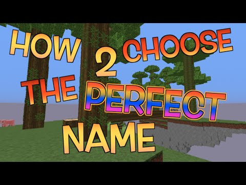 How to Choose The Perfect Minecraft Name!