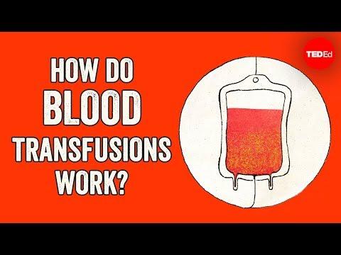 How Do Blood Transfusions Work? - Bill Schutt